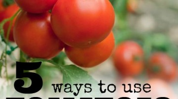 5 Ways to Use Tomatoes When they are Over Ripe