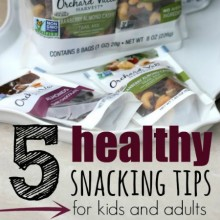 5 Healthy Snacking Tips for Kids and Adults