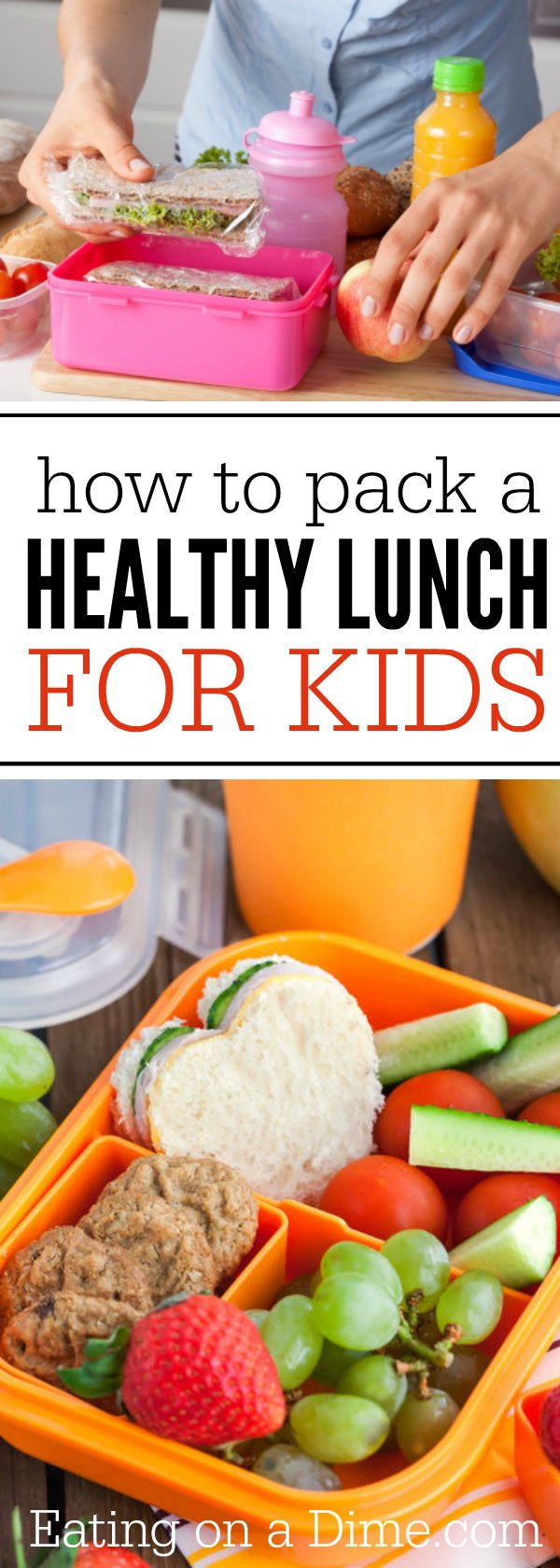 Every mom or dad who makes lunches for kids knows the goals: avoid total jettisoning of lunch into trash by picky eater; hope she or he doesn't trade healthy apple for can of soda; nudge the menu past the old standbys before complete boredom sets in on Day (kids need lunches, on average, times a .