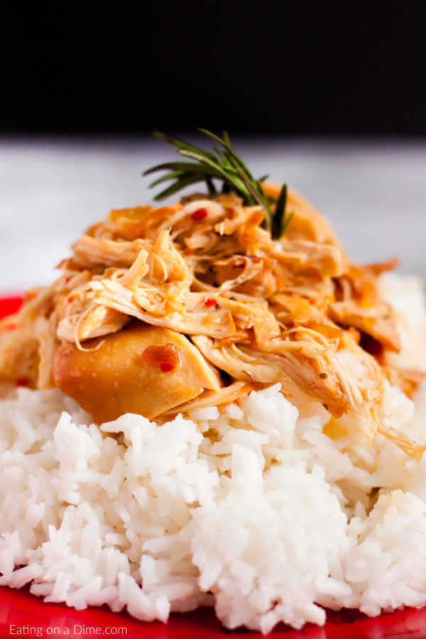 Crock Pot Savory Chicken Recipe Easy Crockpot Chicken
