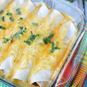 cream enchiladas sour chicken print