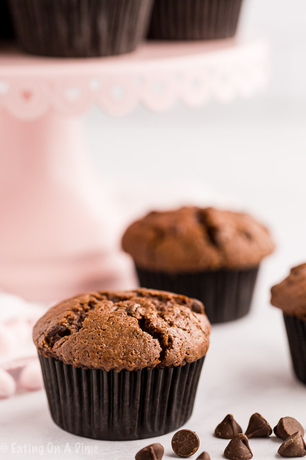 Make Double Chocolate Chip Muffins for the perfect excuse to enjoy chocolate for breakfast. Each bite is so decadent and amazing.