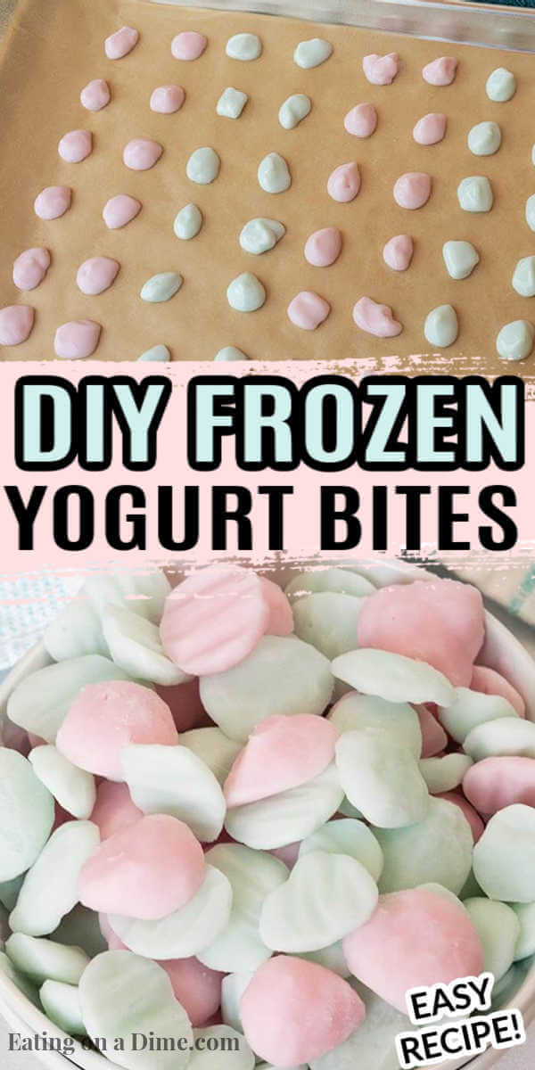 Learn how to make easy frozen yogurt bites for a tasty and healthy treat for the kids. Plus, you will save money too!