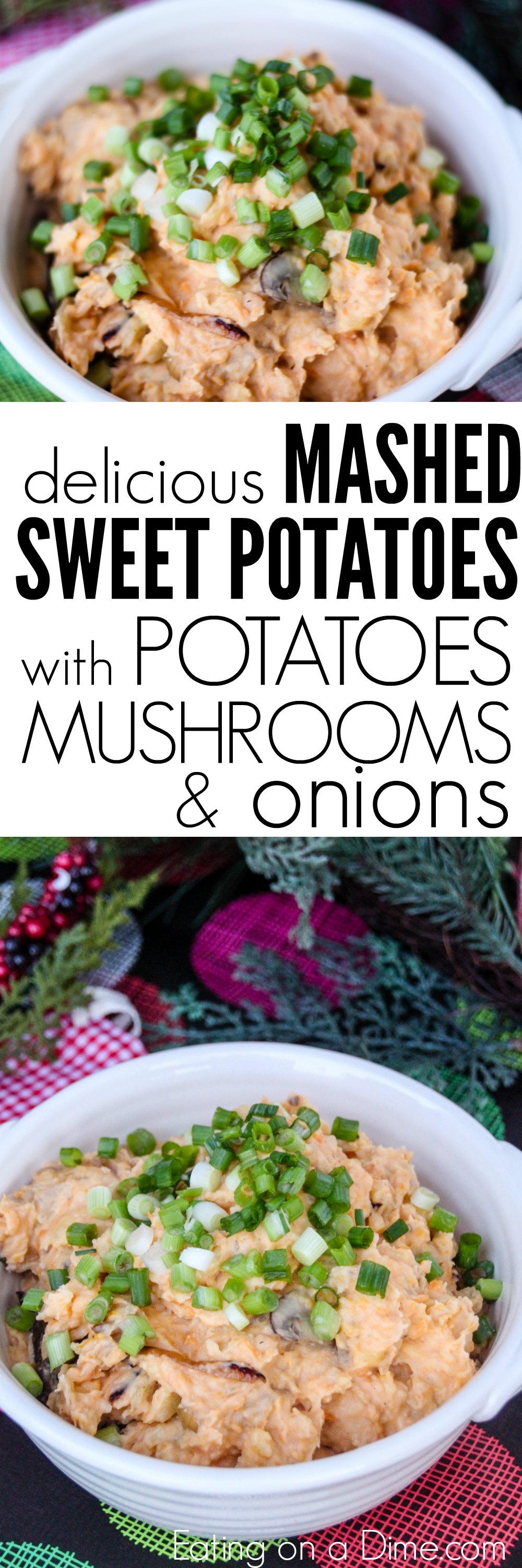 Needing an easy side dish recipe? Try this mashed sweet potatoes recipe! Making mashed sweet potatoes with mushrooms, onions, and more is delicious!