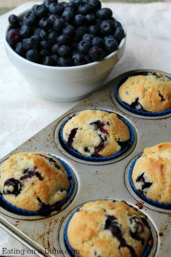 homemade blueberry muffins blueberry muffin recipe easy blueberry muffins you will 30342