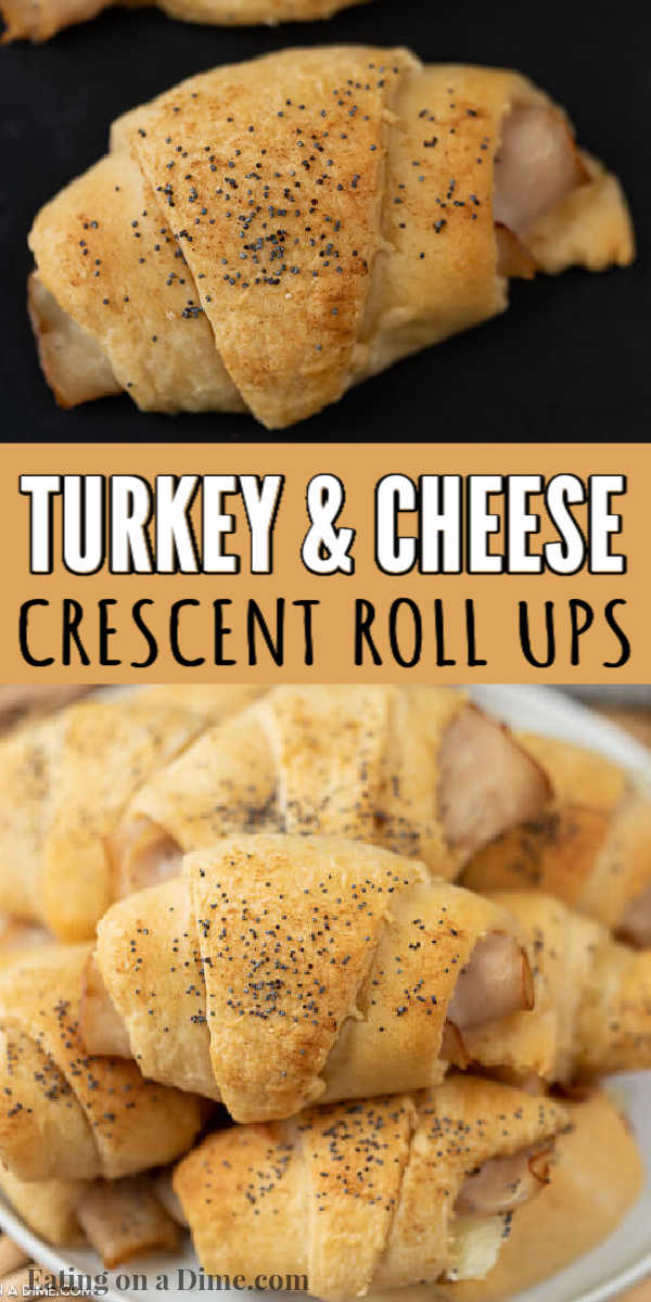 These turkey and cheese crescent roll ups are easy to make and are the perfect lunch or appetizer recipe. Everyone loves these turkey cheese crescent roll ups. These turkey and cheese crescent rolls are simple to throw together in minute and taste great too! #eatingonadime #appetizerrecipes #lunchrecipes #turkeyrecipes #crescentrollrecipes