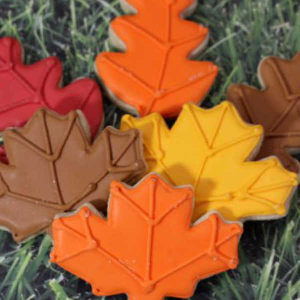 homemade sugar cookies decorated as fall leaves