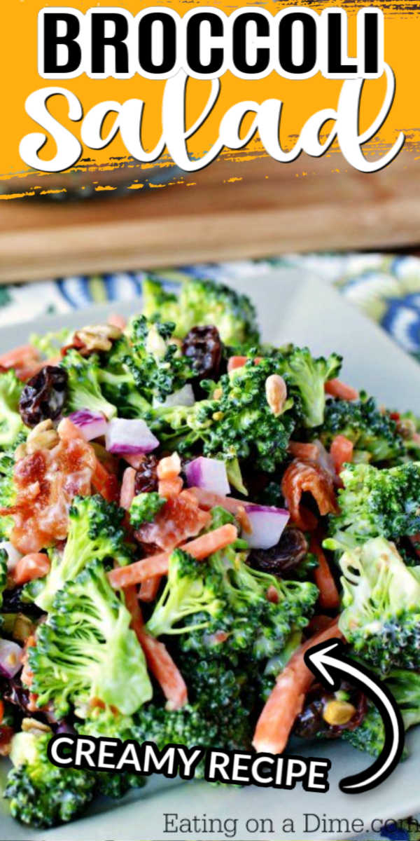 Broccoli Salad Recipe Broccoli Salad Creamy Broccoli Salad
