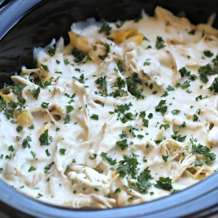 Try this easy crock pot chicken Alfredo casserole recipe - This Chicken Alfredo pasta in the crock pot is delicious and packed with flavor! Try it today.