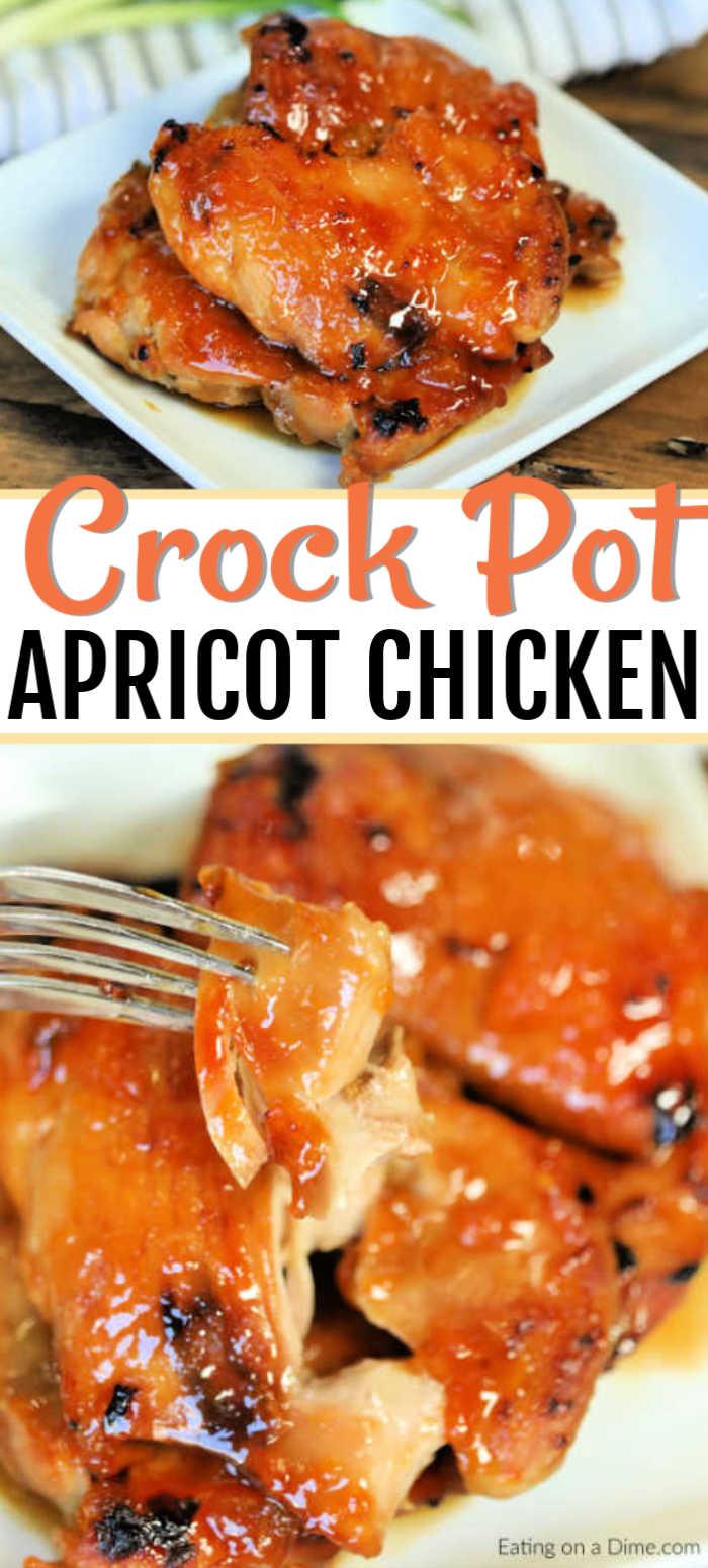 Gyros: Crock Pot Apricot Chicken Recipe