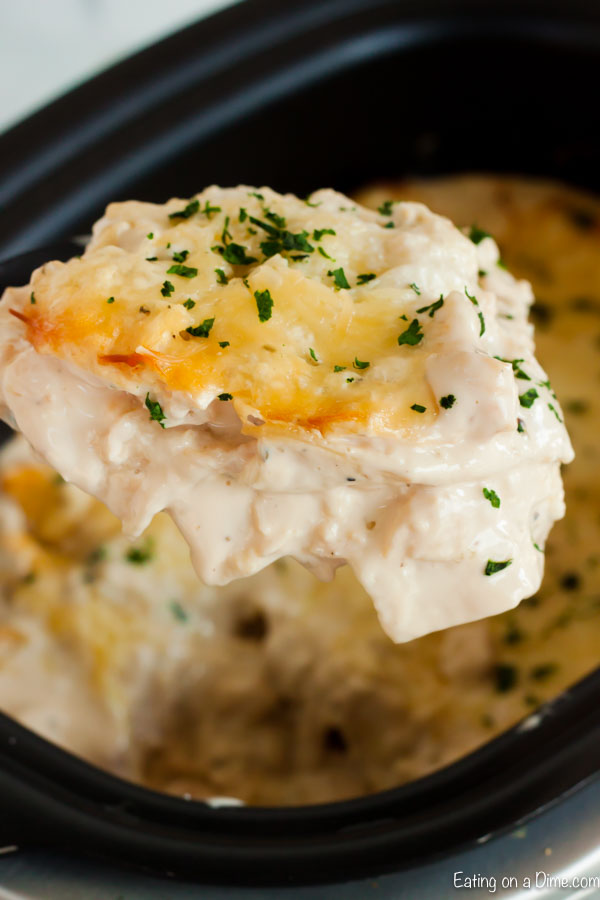 If you love lasagna and Alfredo, thisCrock Pot Chicken Alfredo Lasagna Recipe is one to try. The creamy sauce is the best comfort food and so easy to make.