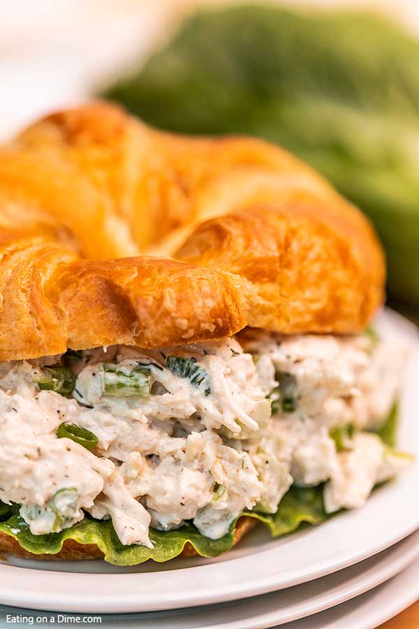 Close up image of chicken salad on a croissant on a white plate.