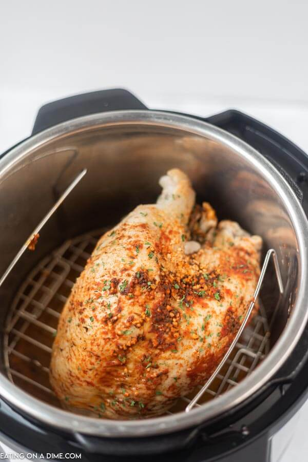 turkey with seasoning in instant pot